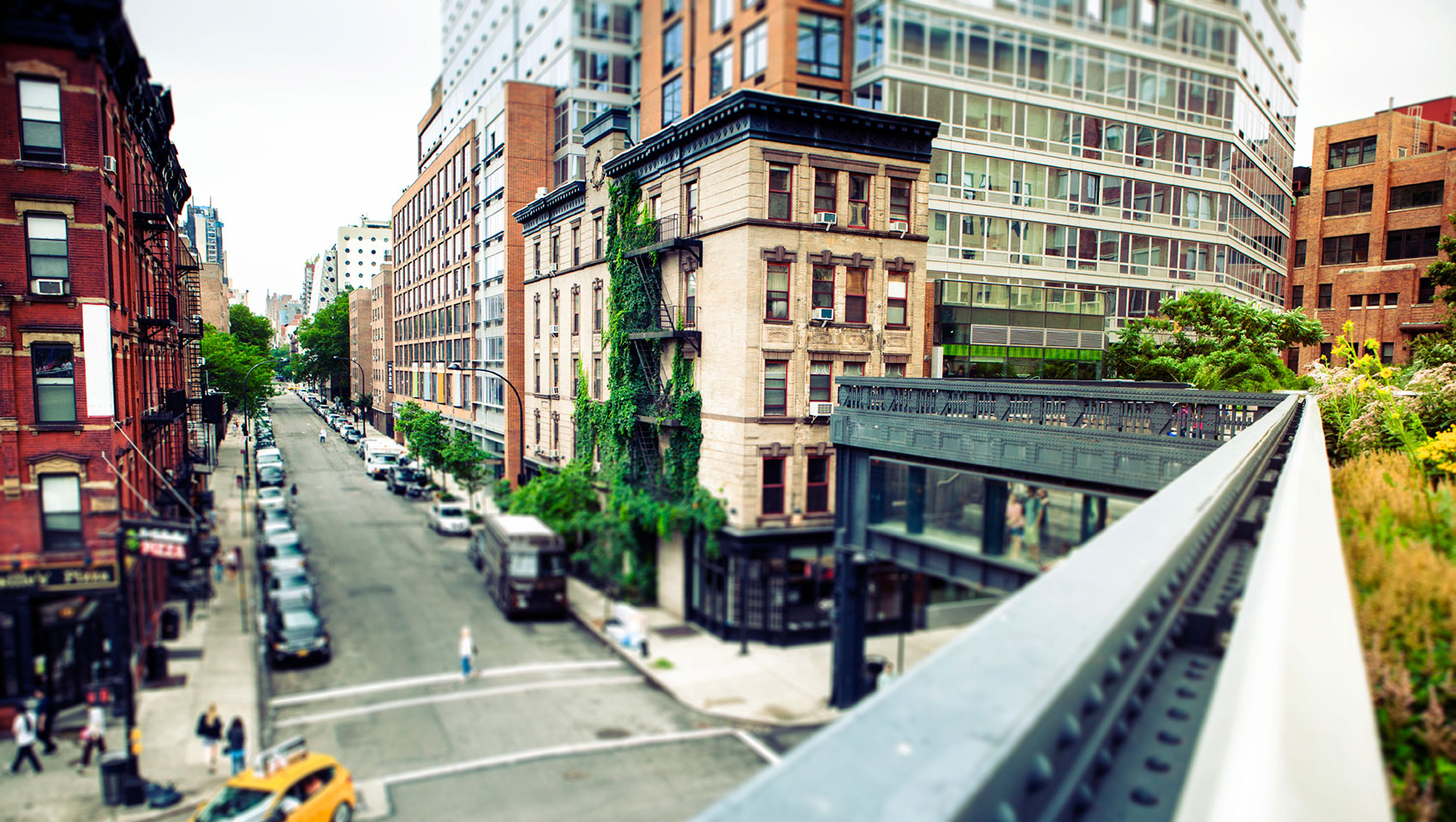 city buildings with green vines seen from High Line